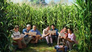 miembros de la Iglesia de Dios Todopoderoso (Relámpago Oriental) se ocultan al aire libre para celebrar sus reuniones