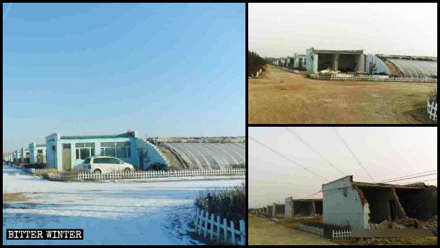 Viveros de plantas en el poblado de Jinhe del distrito de Saihan en la ciudad de Hohhot antes y después de la demolición.