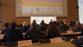 Día Internacional de la Paz en la ONU en Ginebra: de qué manera trabajan las nuevas religiones perseguidas por la armonía y la justicia mundial