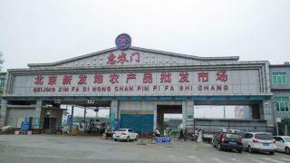 Coronavirus en Pekín: el PCCh culpa al salmón europeo