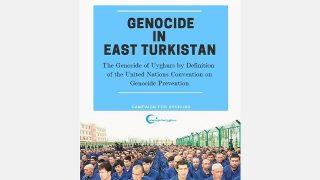 Un nuevo informe afirma que sí, se trata de un genocidio contra el pueblo uigur